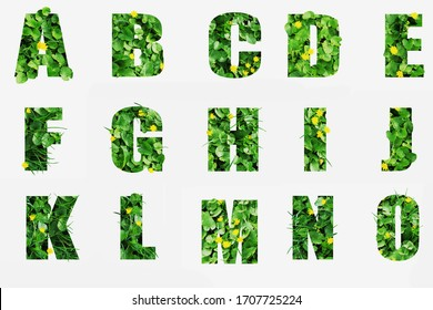Green vegetation forms letters with the effect of volume