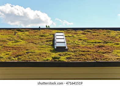 green or vegetative roof and skylight of visitor center in eagan minnesota