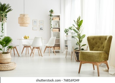 Green velvet armchair standing in the corner of bright dining room interior with windows
