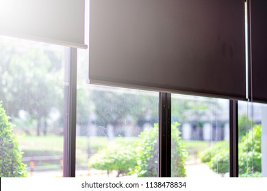Green view beside window in office, Flare light through the window in the morning, relaxing time, Quiet time, frame of window for your text, Light sun shine from window