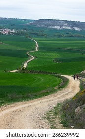 Green views of Camino de Santiago. Camino Francaise. Walking to the Santiago over Spain, Europe.