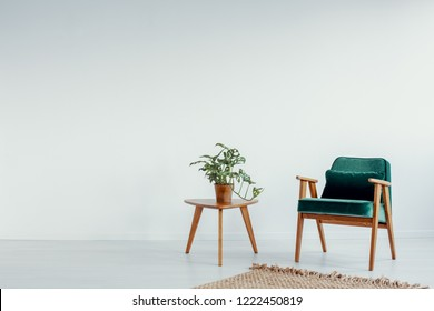 Green vintage armchair next to small coffee table with green plant in pot, real photo with copy space on the empty white wall