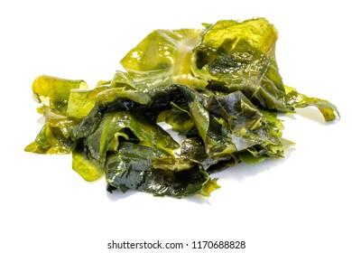 Green wakame alga isolated on white background
