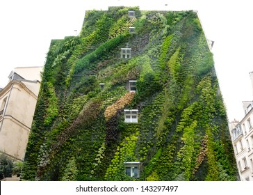 Green wall on exterior of  building