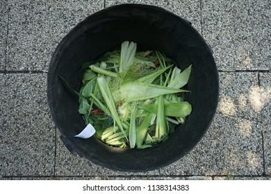 Green waste from homegrown organic vegetable garden