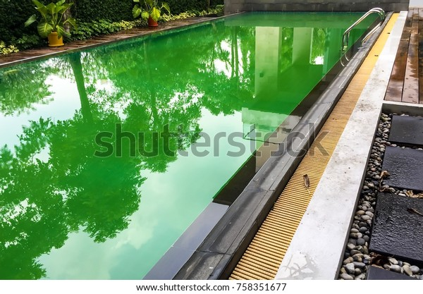 Green Water Dirty Swimming Pool Salt Stock Photo (Edit Now) 758351677