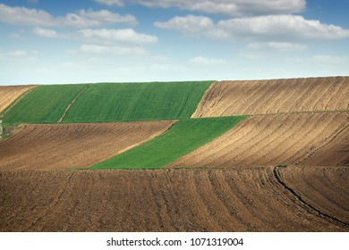 green wheat and plowed fields landscapes