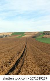 green wheat and plowed fields landscapes agriculture