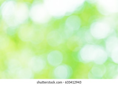 Green and white bokeh background from natural