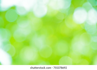Green and white bokeh backgroung from natural