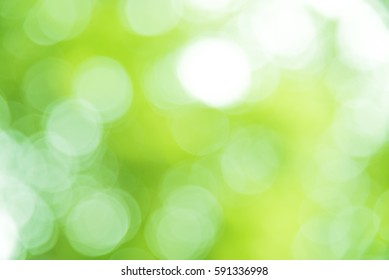 Green and white bokeh from natural