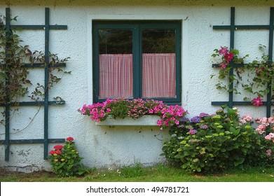 green window with flower box