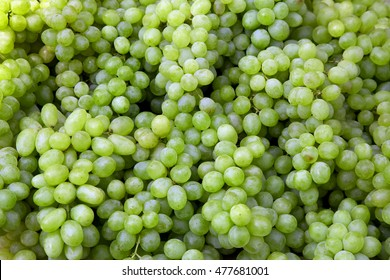 Green wine grapes background