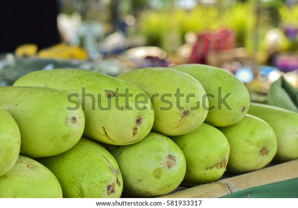 Green winter melon for sell at market, Benincasa hispida