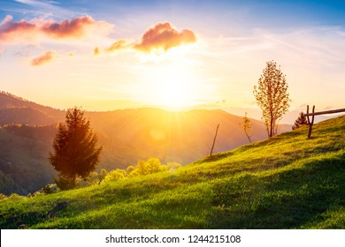 green wonderland at purple sunset. gorgeous countryside in mountains under the beautiful sky. wooden fence along the path uphill the grassy meadow. wonderful springtime season