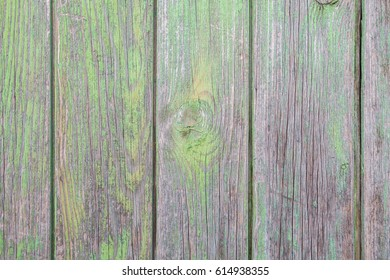 green wood background texture