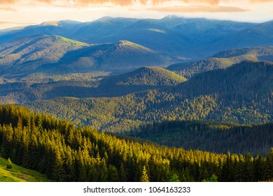 green wooded mountain at the evening