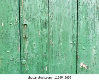 Green wooden background, old rustic textured door, Italy