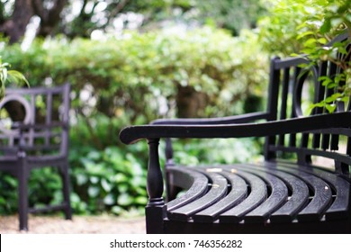 Green wooden bench without people at park, relaxing space