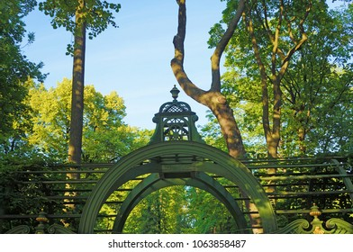 A green wooden gazebo roof in the summer park against the backdrop of juicy green trees and bushes.