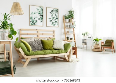 Green wooden sofa with many cushions standing in bright living room interior with botanic posters