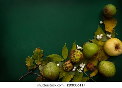 Green yellow autumn harvest top view background