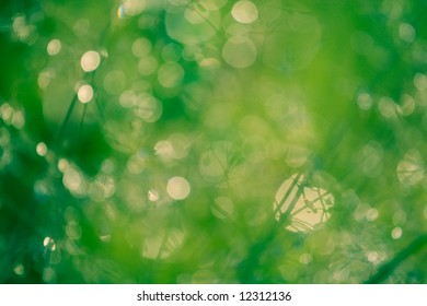 Green and yellow blurred spots and circles
