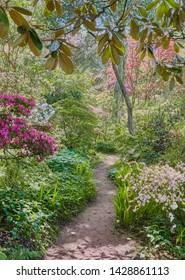 Greencombe Gardens, Porlock, Exmoor, Somerset