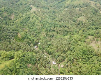 Greenery in the outskirt of a City in Davao del Norte, Philippines