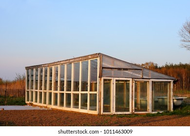 Greenhouse built of old windows for farming healthy organic food.