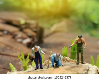 Greenhouse concept, miniature mini figures with planting tree  on stump and protect nature and environment. Save the world with plant trees in the forest background. Earth Day Concept