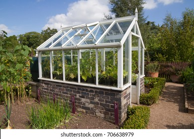 Greenhouse in English vegetable garden.