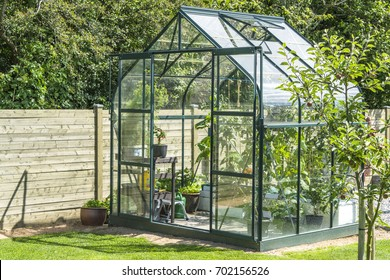 Greenhouse in a garden near a wooden fence in the summer with an apple tree