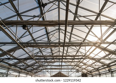 Greenhouse Glass Roof and Architectural Support Structure