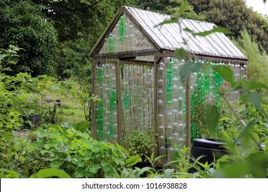 Greenhouse made of plastic bottles