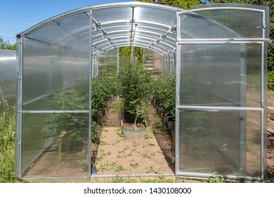 Greenhouse made of polycarbonate on a country plot. Tula region, Russia