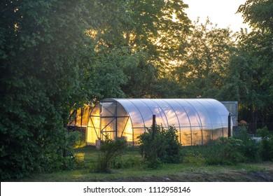 Greenhouse on the precinct. Private garden. Sunset light.