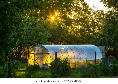 Greenhouse on the precinct. Private garden. Sunset light.