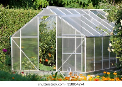 Greenhouse with tomato plants in the garden
