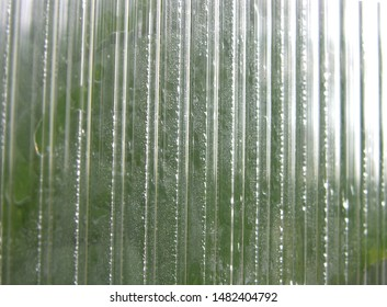 Greenhouse wall made of polycarbonate with different condensate.  Various refraction and reflection of light in polycarbonate. here and there glimpse greenhouse plants. shallow focus. Close up.