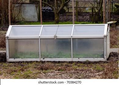 greenhouse white