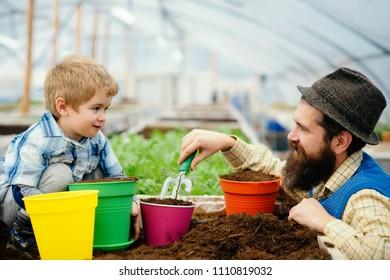Greenhouses and Garden Glasshouse Kits. Kids for Eco. Bio Greenhouse Garden.