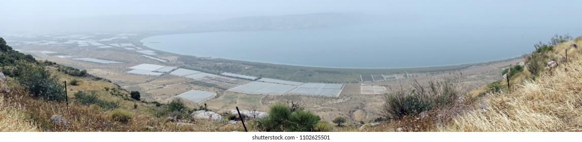 Greenhouses near Kinnereth lake in Galilee, Israel