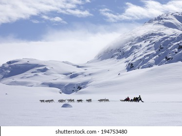 GREENLAND - APRIL 8,2014: Group of unidentified riders making a dog sled trip across of east part of Greenland
