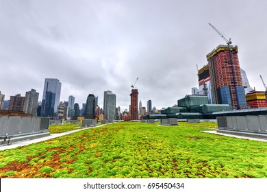 Greenroof on Jacob K. Javits Convention Center in New York City.