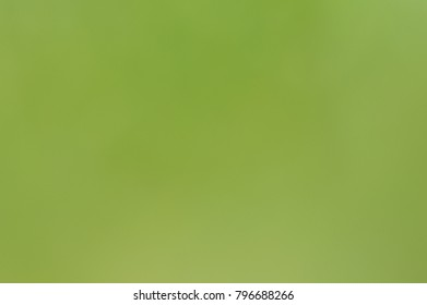 greens background wallpaper