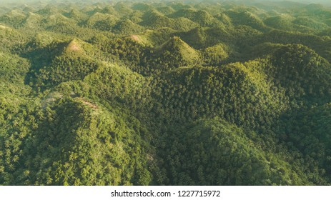 Greens-capped hills. Aerial drone shot. Indonesia. Sumba island. Gorgeous landscape that can be used as a background for the different types of collages and illustrations.