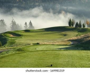 Green-side Fog
