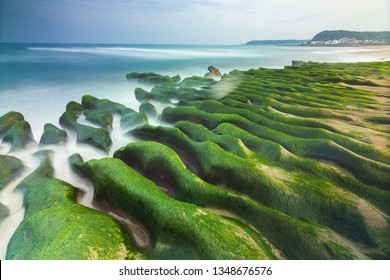 """""""Greenstone"""" Coastal landscape is the only special landscape of Taiwan, located in the north coast of Shimen District, Every year ONLY in spring, the green algae flourish on the surface of the reef"""
