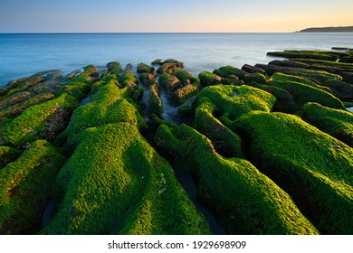 """""""Greenstone"""" Coastal landscape is the only special landscape of Taiwan, Laomei Green Reef is located on the North Coast near the Laomei Community in Shimen District.Every year ONLY in April and May。"""